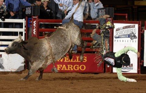 Comfort Suites Waco - Heart O  Texas Rodeo