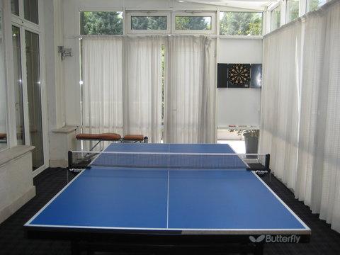 Villa Jelena - Ping Pong
