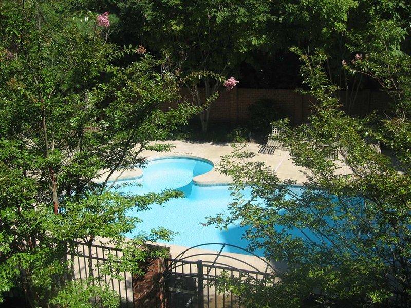 Homewood Suites by Hilton Alexandria Billede af pool