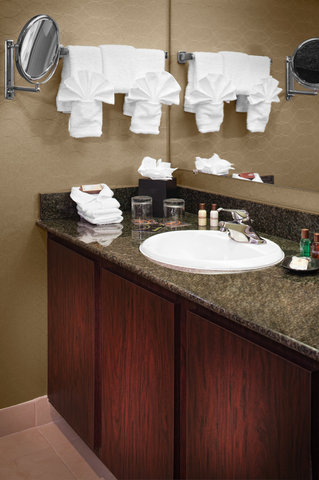 SHERATON DETROIT-METRO AIRPORT - Guest Bathroom