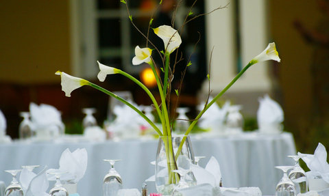 Hotel Albuquerque at Old Town - Weddings at Hotel ABQ