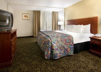 Comfort Inn & Suites - Room