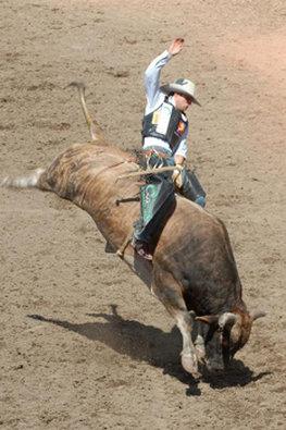 Best Western - Sonora, TX