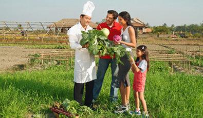 Vedic Village Spa Resort - Farming organic vegetables at your doorstep