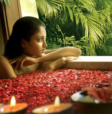Vedic Village Spa Resort - Sanjeeva Medical Spa