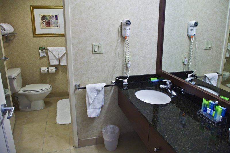 Radisson Suite Hotel Toronto Airport Pokoj