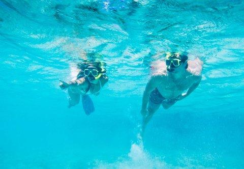 Curacao Marriott Beach Resort & Emerald Casino - Snorkeling
