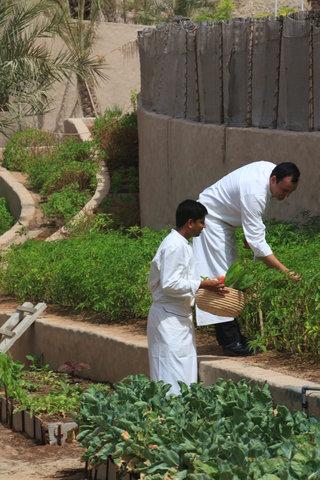 Six Senses Zighy Bay - Organic Garden