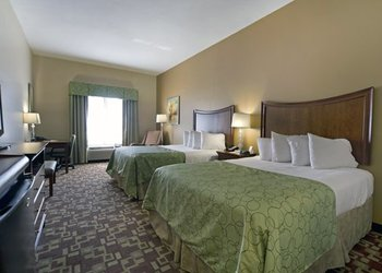 Comfort Inn & Suites Orangeburg - Room