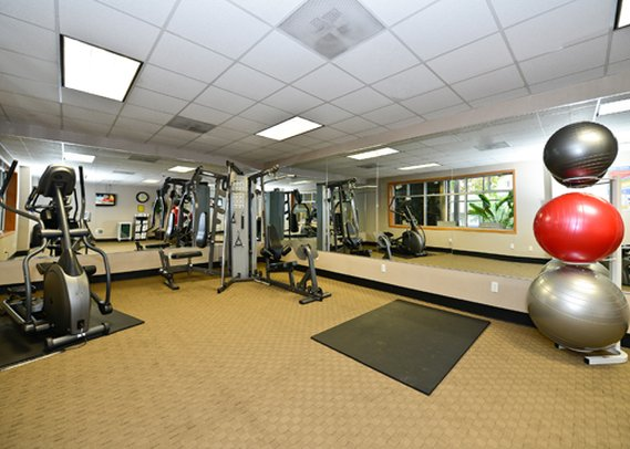 Quality Inn & Suites Fitness salonu