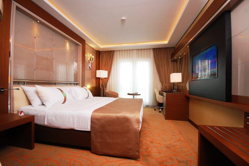 Holiday Inn Ankara - Kavaklidere Odanın görünümü