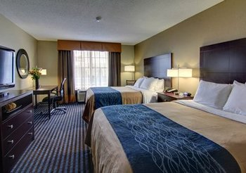 Comfort Inn & Suites Smyrna - Room