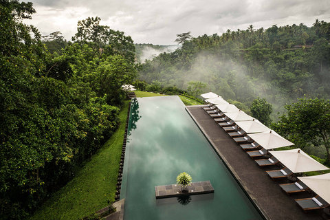 阿丽拉酒店 - Pool View