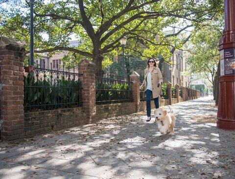 The Magnolia Hotel Dallas - Dog Walk