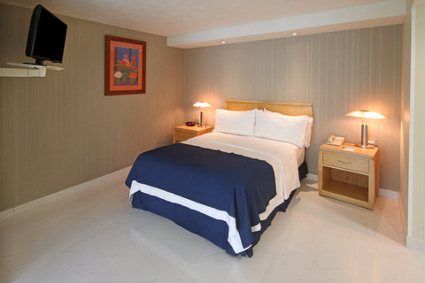 Holiday Inn Cuernavaca Hotel - Single Bed Guest Room