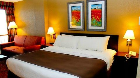 ฮอลิเดย์อินน์ แอเปลตัน โฮเต็ล - King Bed Guest Room