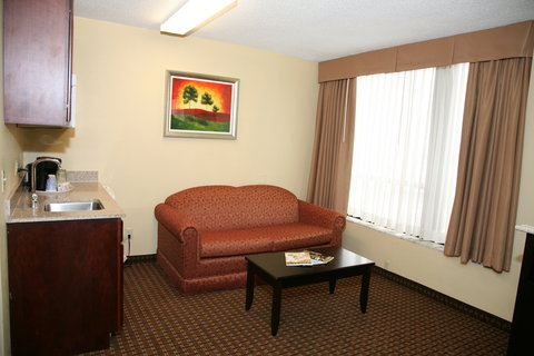 Holiday Inn Express & Suites DETROIT DOWNTOWN - Sofa Sleeper Available in Wet Bar Suite
