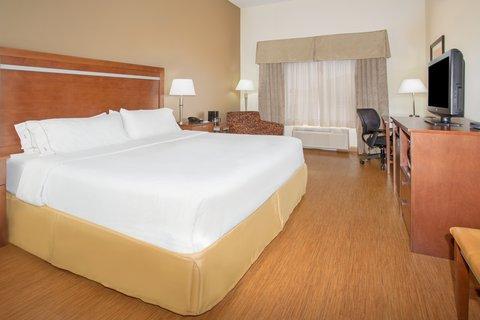 Holiday Inn Express & Suites GLENDIVE - King Pet Friendly Room