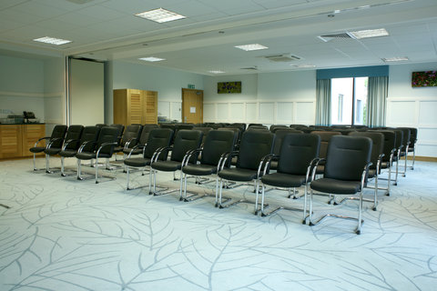 Crowne Plaza DUBLIN - NORTHWOOD - A pleasant and practical conference room
