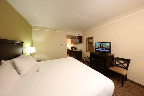 Holiday Inn Express & Suites GRAND RAPIDS AIRPORT - King Bed Guest Room