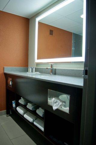 Holiday Inn ALTON (LEWIS&CLARK TRAIL SITE) - Bathroom