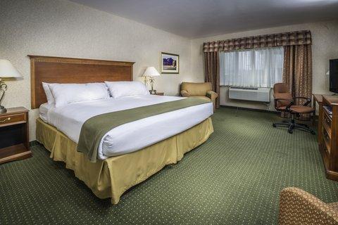 甘尼森快捷假日套房酒店 - King Guest Room