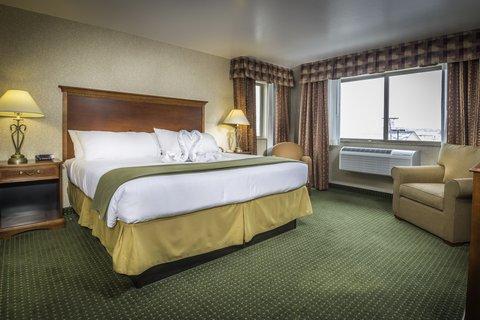 甘尼森快捷假日套房酒店 - Single Bed Guest Room