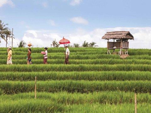 Novotel Bali Nusa Dua - Other