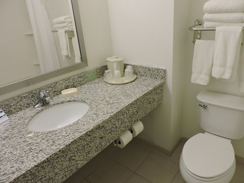 Holiday Inn Express & Suites MONTGOMERY - Guest Bathroom