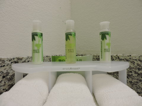 Holiday Inn Express & Suites MONTGOMERY - Bathroom Amenities