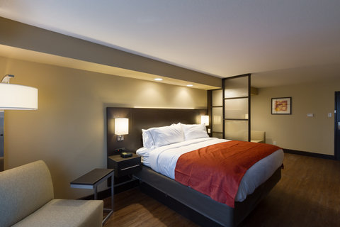 Holiday Inn Express & Suites SAN ANTONIO EAST - I10 - Single Bed Guest Room