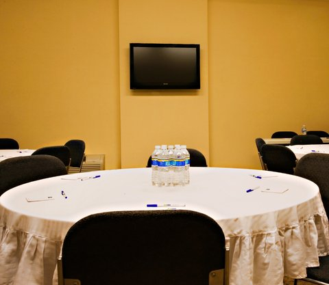 Holiday Inn Express & Suites BORGER - Borger Meeting Room