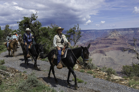 Holiday Inn Express & Suites GRAND CANYON - Take a mule ride down into the Grand Canyon or along the rim