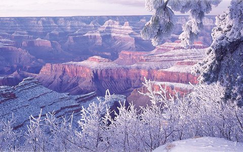 Holiday Inn Express & Suites GRAND CANYON - Scenery