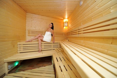 Holiday Inn BRNO - Sauna