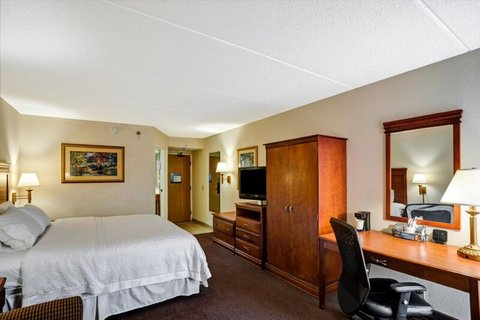 Hampton Inn Albany-Wolf Road - King Study Workdesk