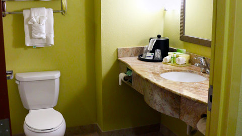 Holiday Inn Express & Suites PERRY - Guest Bathroom