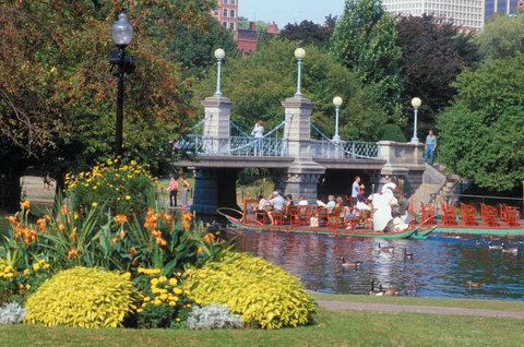 Hotel Indigo BOSTON-NEWTON RIVERSIDE - Boston Public Garden Swan Boats