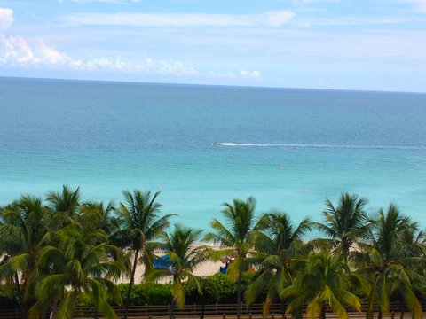 Holiday Inn Miami Beach - Oceanfront - View from Holiday Inn Miami Beach Oceanfront