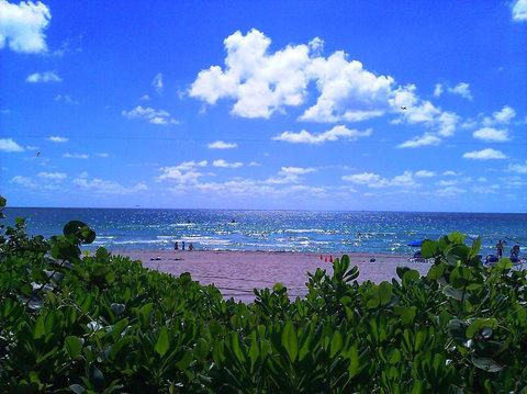 Holiday Inn Miami Beach - Oceanfront - Beach behind Holiday Inn Miami Beach Oceanfront