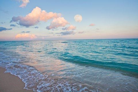 Holiday Inn Miami Beach - Oceanfront - Beach