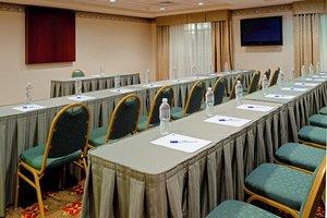 Meeting Facilities - Holiday Inn Express Mt Arlington