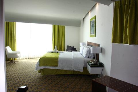 Holiday Inn QUERETARO ZONA KRYSTAL - Guest Room
