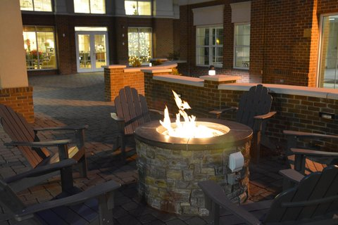 Homewood Suites by Hilton Albany Hotel - Fire Pit