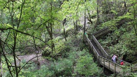 Holiday Inn GAINESVILLE-UNIVERSITY CTR - Devil s Millhopper State Park