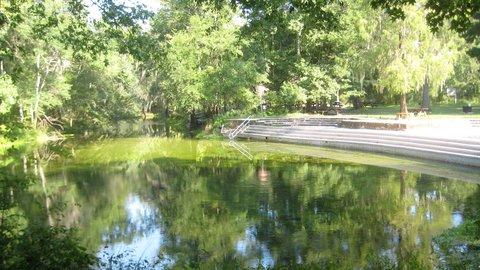 Holiday Inn GAINESVILLE-UNIVERSITY CTR - Poe Springs State Park