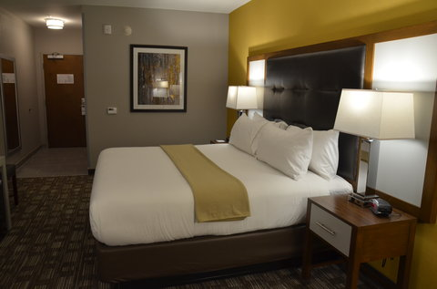 Holiday Inn Express & Suites ALBANY - Single Bed Guest Room