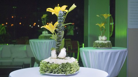 Holiday Inn GUAYAQUIL AIRPORT - Special Events