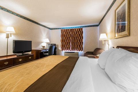 Comfort Inn Evansville - King Room