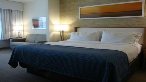 Holiday Inn Express & Suites Pocatello - King Guest Room
